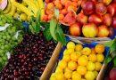 Подача ценовых котировок на поставку саженцев плодовых и ягодных культур