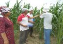 Trainings under the project that help to increase agricrop yields of farmers-water users